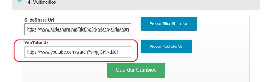 Campo para la URL del video cargado en YouTube.
