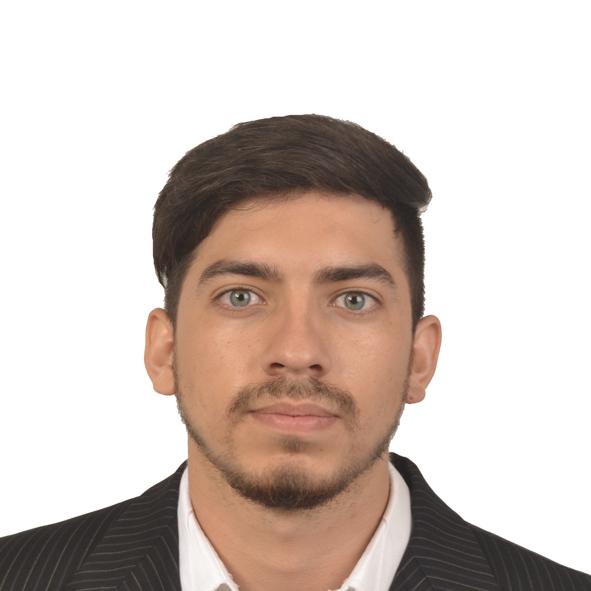 Hernan J Sanchez Avila