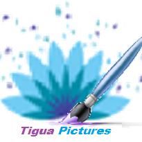 TIGUA PICTURES