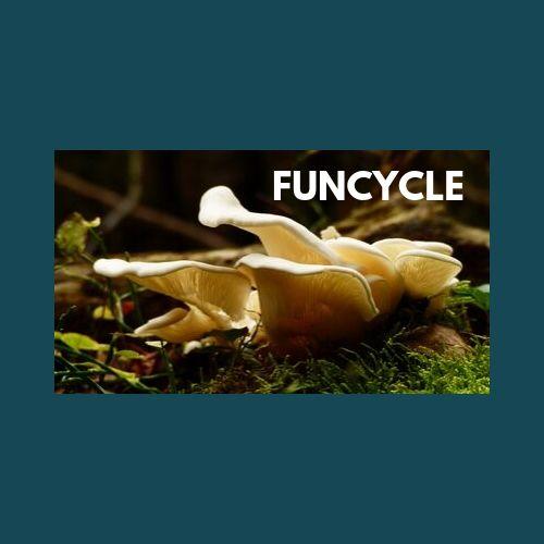Funcycle
