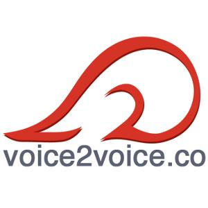 Voice 2 voice