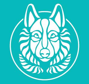 Lobo Turquesa